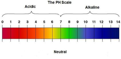 ph and poh acids \u0026 bases explainedit\u0027s important to remember the ph only indicates it strength, it doesn\u0027t determine it poh scale
